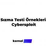 Sızma Testi Örnekleri:Cybersploit