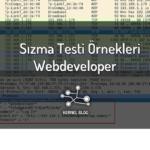 Sızma Testi Örnekleri:Webdeveloper