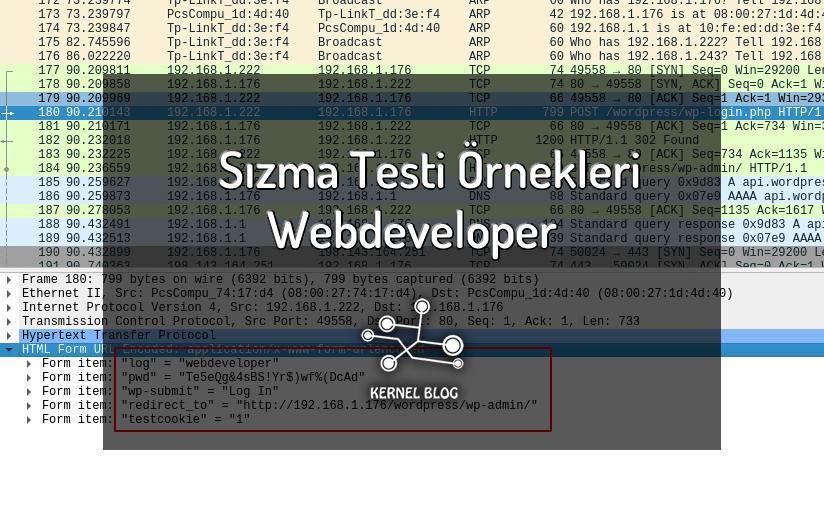 sızma testi örnekleri webdeveloper