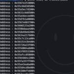 Linux ASLR Bypass