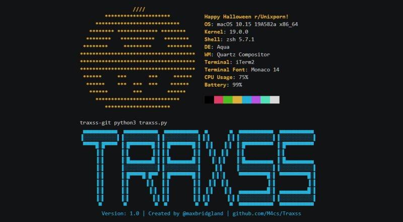 TraXSS Nedir?
